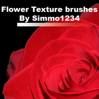 Flower Texture Brushes by Simmo1234