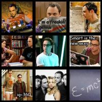 The Big Bang Theory by lutik87
