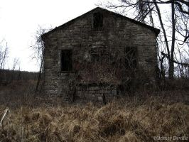 Blair Witch Style House by BritneyDeville