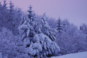 White blanket under pink sky by uswcm