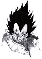 Broken Vegeta by NovaSayajinGoku