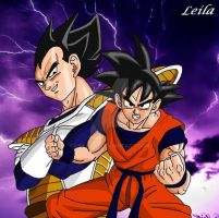 Vegeta and Goku by Leila490