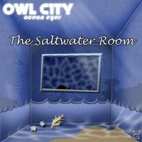 Owl City - The Saltwater Room by GalaxyInvader