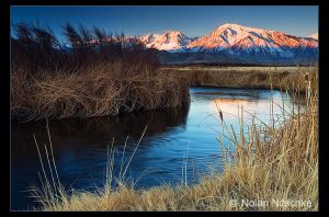 Owens River Sunrise by narmansk8