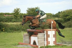 Cross country 11 by Kennelwood-Stock