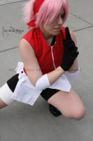 Sakura Haruno - Ready to fight by Wings-chan