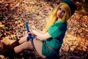 Link: Legend of Zelda by Kitnichi
