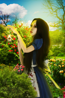 Alice in Wonderland | Alice: Madness Returns | AMR by ddistortedpain