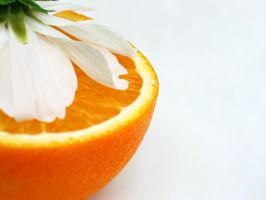 Orange Blossom by bluewave