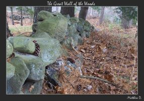 The Great Wall of the Woods by mattdanna