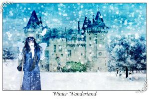 Winter Wonderland by InYaFaceDesigns