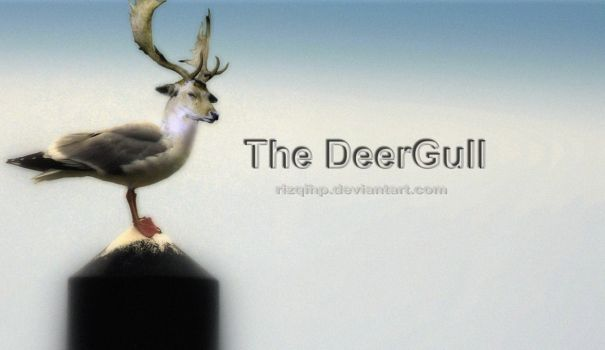 The DeerGull by RizqiHP