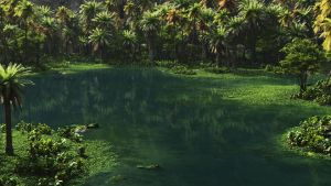 Tropical pond by rraffy