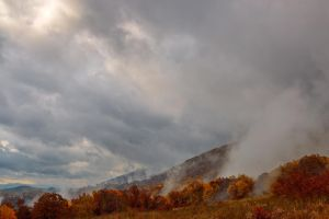 Dolly Sods Mountain Fog - Phoenix Rising by somadjinn