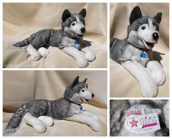 Douglas Cuddle Toys - Nikita Husky by The-Toy-Chest