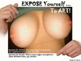 Expose Yourself to Art by Laurion