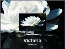 Victoria by Momez