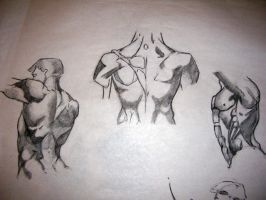 Torso Studies by Trip-Dot