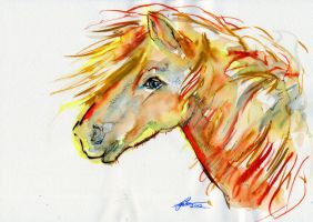 Watercolour Study of Icelandic Horse Head by Leeuwtje
