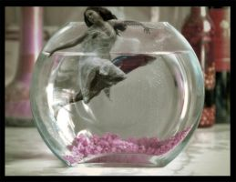 My Fish Bowl by BlackRoseImmortal666