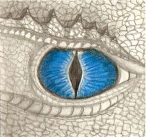 Dragon Eye by ElizabethDiehl