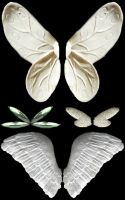 4 Sets of Angel or Fairy Wings by FantasyStock