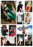 2013 (Early) Cosplay Photo Collage by TheBigTog