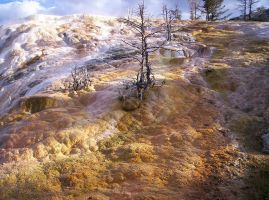 Mammoth Hot Spring Terraces 2 by SunfallE