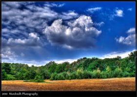 Clouds over the forest by Mordredh