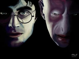 Harry Potter and Voldemort by buried-onsunday