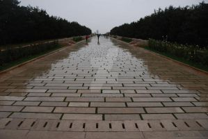 The Long Wet Way by Mcnicky