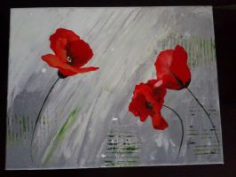 Coquelicots by xNo2x
