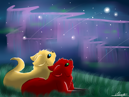 Gazing at Starclan by dragonwolfgirl1234