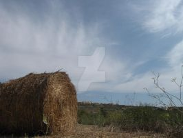 Hay Bale In The Sun . . . by Maltese-Naturalist