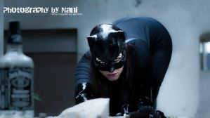 MCC: CATWOMAN: The cat and the Jack by MummeryComics