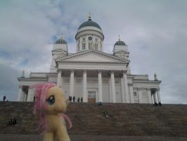 Flutters and the Helsinki Cathedral by Drako1997