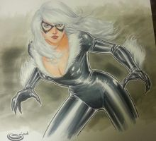 Black Cat commission from Baltimore Comicon by Sajad126