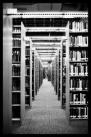 Library III by Athos56