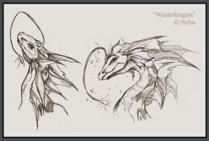 Water Dragon Sketches by Inoht