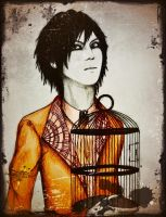 Hizumi - Cage For My Heart by xXHizumi-loverXx