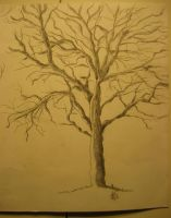 Just a Tree by Udapruda