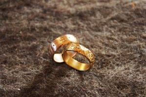 Brass and bronze rings 2 by Dewfooter