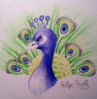 Peacock by Mirror-Kat