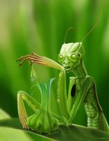 MANtis meal by damir-g-martin