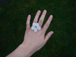Ring by a-handy-stock