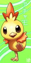 Shiny Torchic by Pand-ASS