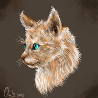 Cat SpeedArt by Owlis