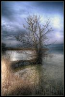 HDR Cheyres 19 by sandpiper6