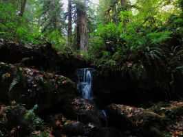 Waterfall And Woods by Glacierman54