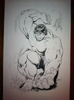 Hulk commission by WestStudio3